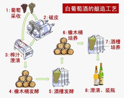 白葡萄酒的酿造过程 - 美酒在线