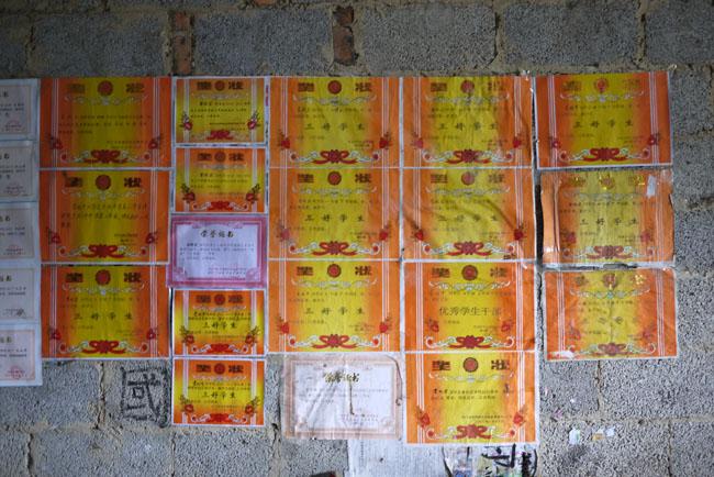 蒙秋宏家里墙壁上贴满了奖状和荣誉证书图片