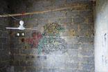 直接画在墙壁上的花